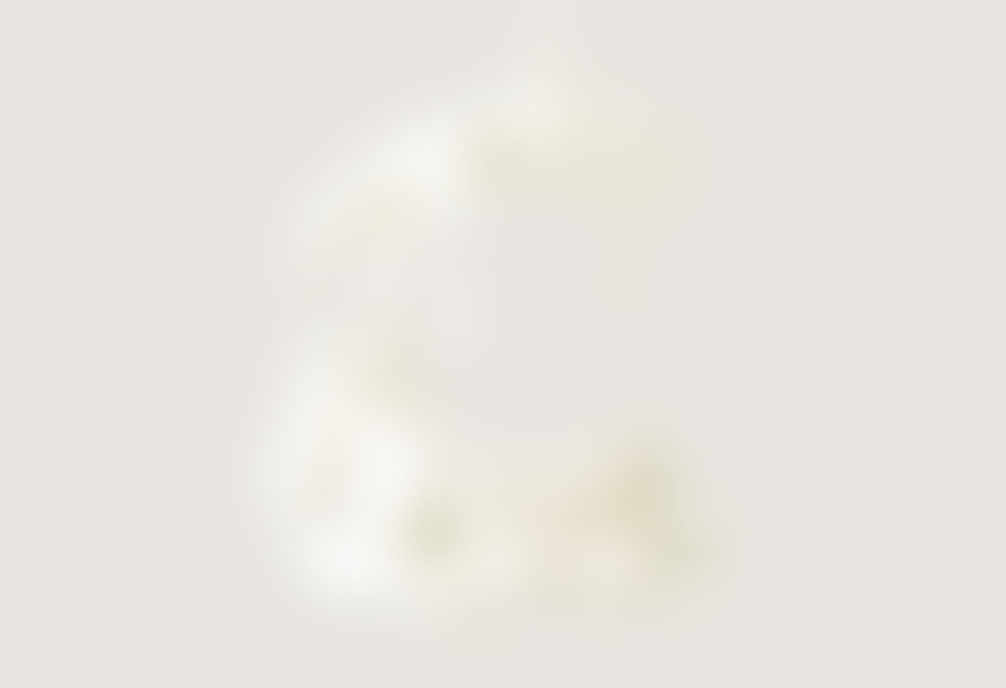 12 col portfolio 1170px wide ballantines 5 autocompressfitresizeixlibphp 1 1 0max h2000max w3 D2000q80sd64d63af77f9296f64db9d2e73b66698