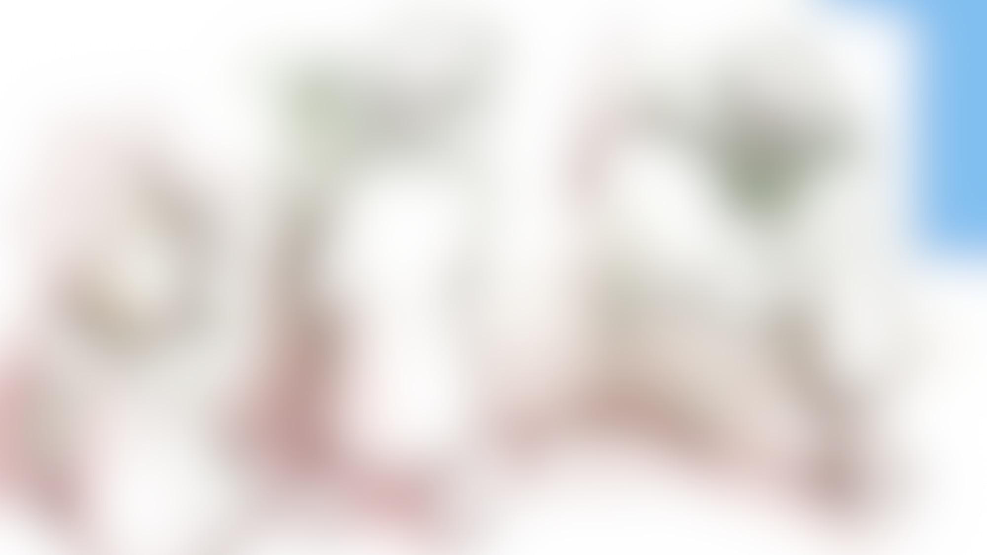 Li P mcd02 autocompressfitresizeixlibphp 1 1 0max h2000max w3 D2000q80s1b61d0b92c14dc15348ad747f2b3fc0d