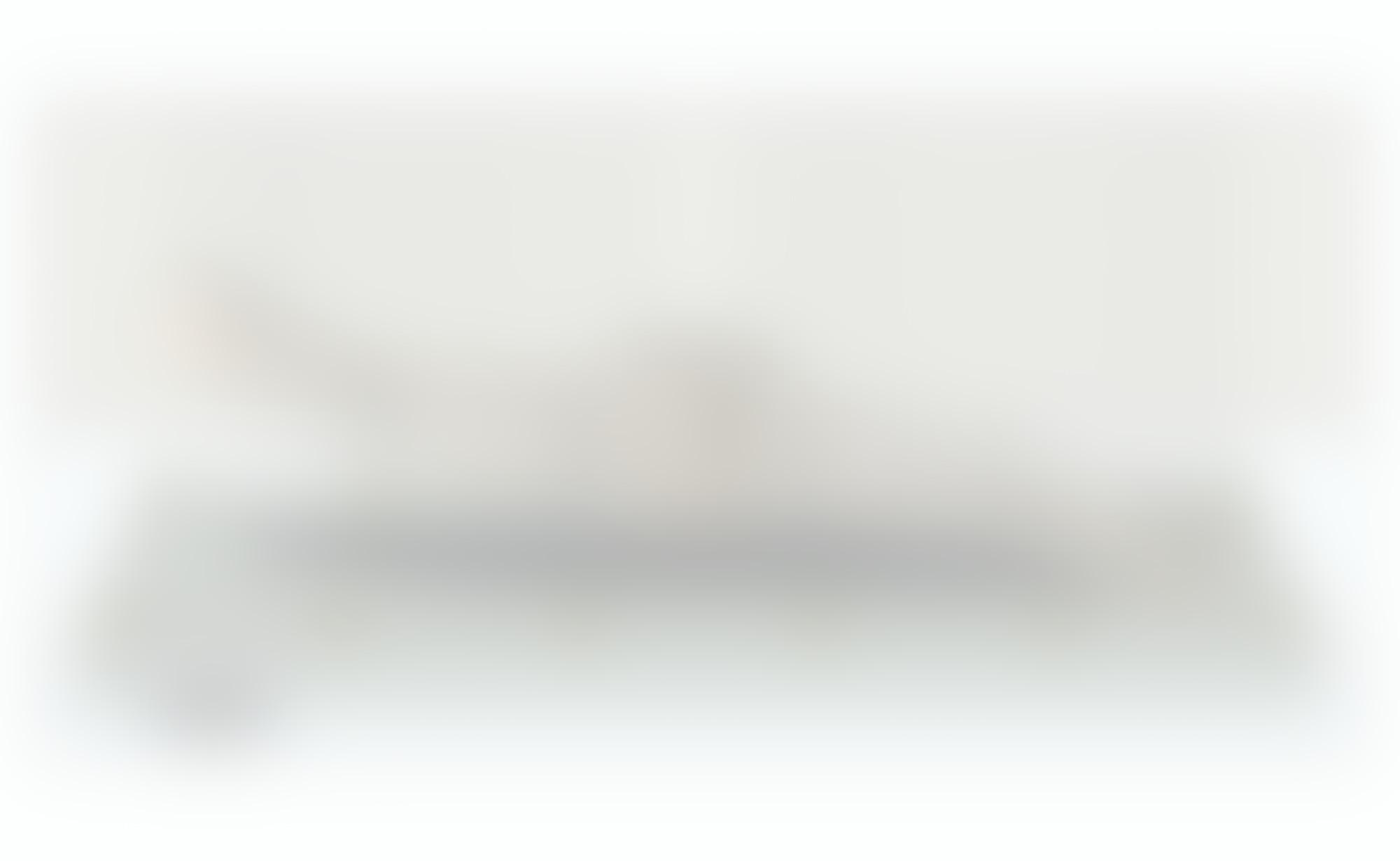 PP Illus2 autocompressfitresizeixlibphp 1 1 0max h2000max w3 D2000q80s2cde8f3204edd21d914f03bbd655d9be