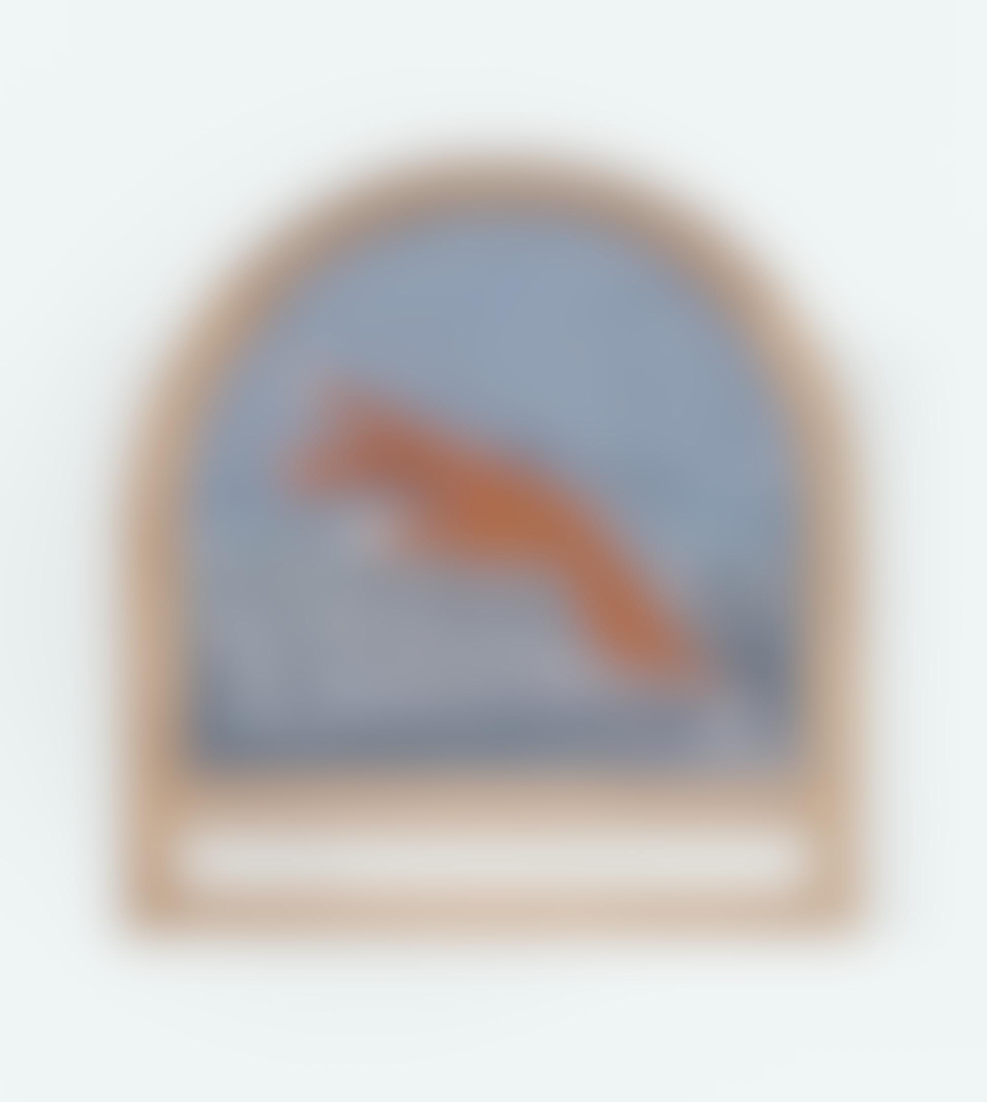 Fragment charlotte edey LR autocompressfitresizeixlibphp 1 1 0max h2000max w3 D2000q80sda121cdb990c46e6987b7d87e1a48d7d