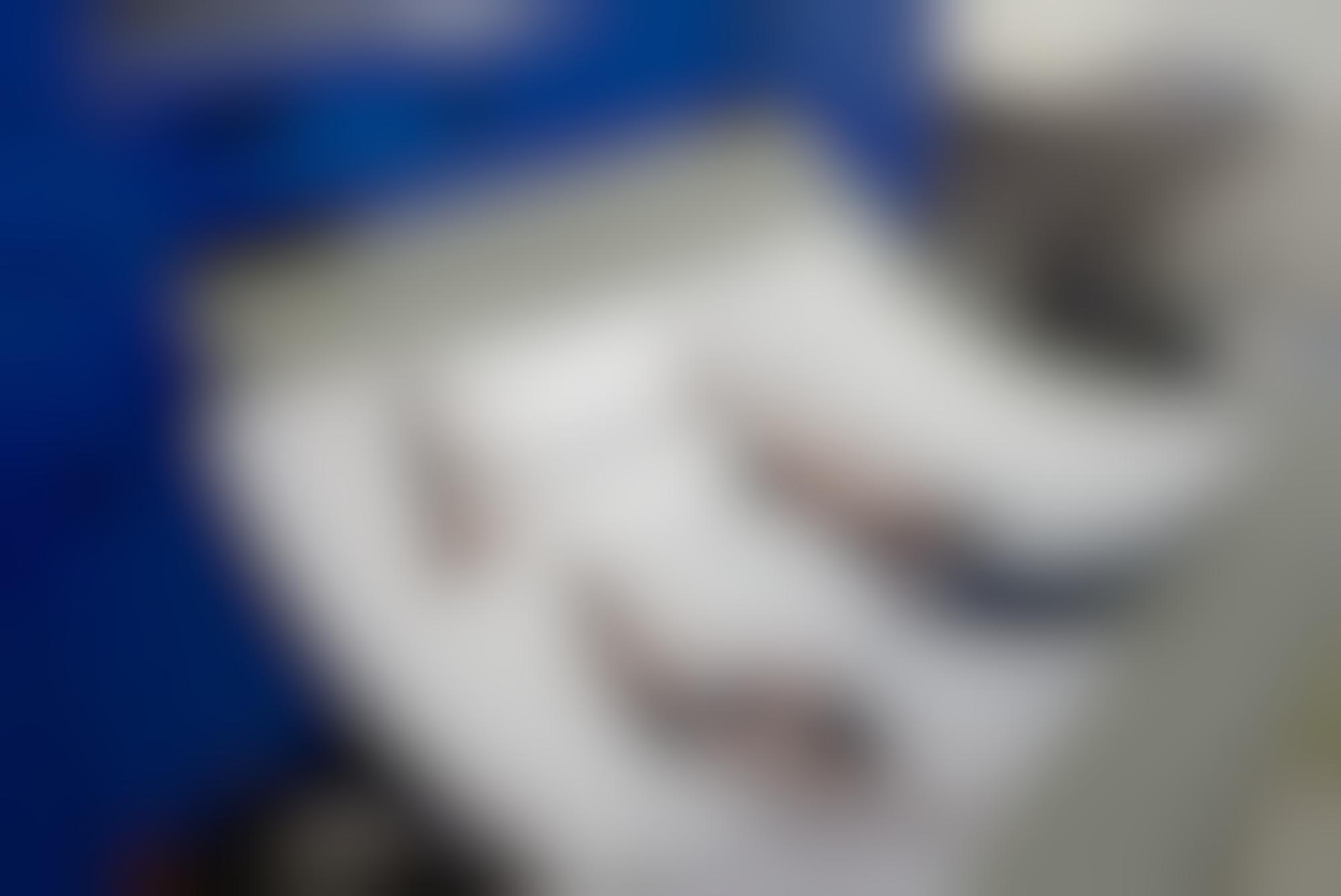 Gfsmith elise lectureinprogress 06 autocompressfitresizeixlibphp 1 1 0max h2000max w3 D2000q80s300b9ec5f5a8aa5636b9e316a03586e8