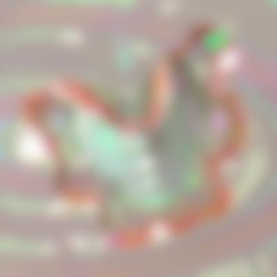 Inesalpha Kaya still life autocompressfitresizeixlibphp 1 1 0max h2000max w3 D2000q80se976a5b99184a704a1b301f1a14efc35