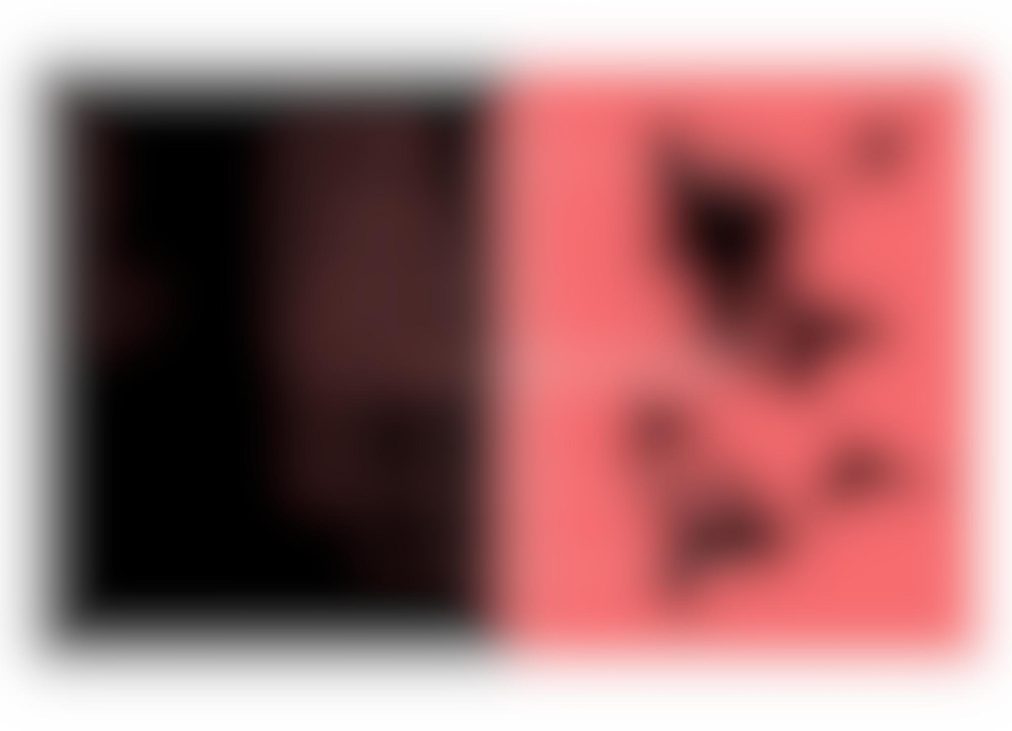Raid 4 autocompressfitresizeixlibphp 1 1 0max h2000max w3 D2000q80s6ae310c3807f580568dede572b82bb15
