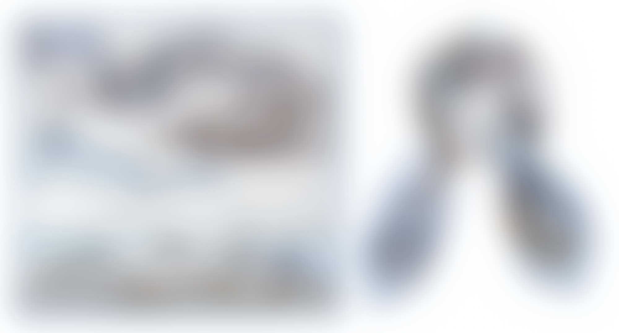 Siladora silk scarf 1 2015 autocompressfitresizeixlibphp 1 1 0max h2000max w3 D2000q80sa4c515e59a0b748998e61a1d01d56d54